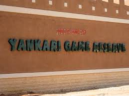Yankari Game Reserve: How To Make Reservation Online And Their Room Rates