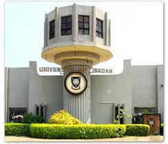 University Of Ibadan Postgraduate School: Their Requirements And The Available Courses To Study