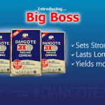 List Of Dangote Group Brands And Factory Locations
