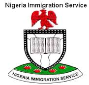 Nigeria Immigration Service: Office Address And Visa Application Guidelines