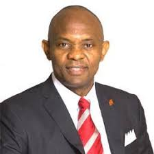 Tony Elumelu Net Worth And All You Must Know About His Foundation