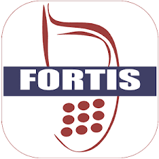 How To Download Fortis Mobile Money App And All You Need To Know About The Loan With Requirements