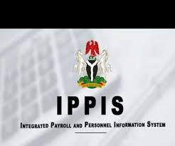 Ippis Payslip App: How To Fill The Complaint Form, Check The Identity Number And Other Functions