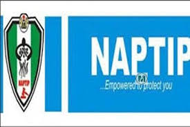 How To Get Naptip Timetable, Enrollment Requirements And All You Must Know